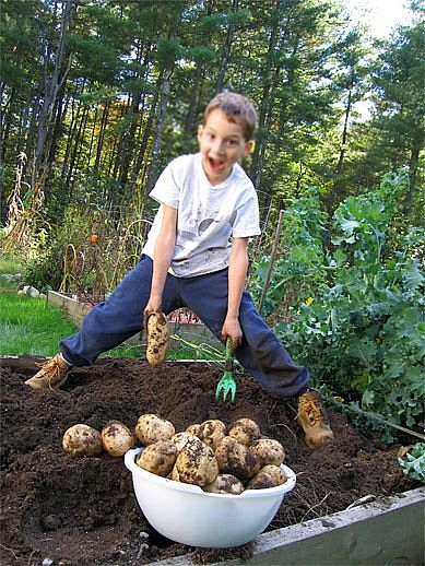 Gardening with preschoolers for Gardening with children