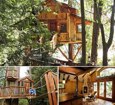 10 rumah di atas pohon orek orek dulur