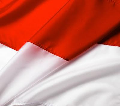 indonesian flag. indonesian flag 2011.