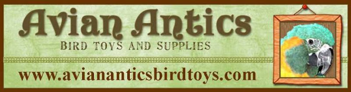 Avian Antics Bird Toys and Supplies