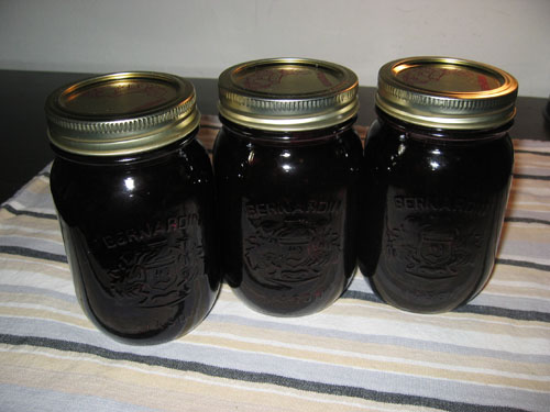 Blueberry Jam