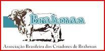 BRAHMAN - BRASIL