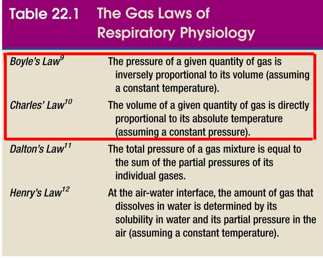 gas laws essay