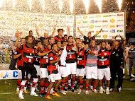 Campeon Liga Brasileña