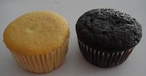 Vanilla & Choc Muffins in Paper Cup