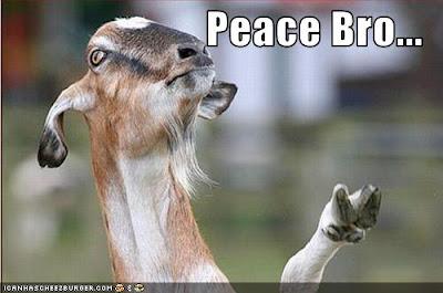 goat holding up hoofed peace sign