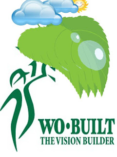 Wobuilt: Going Green in the City: Building and Renovating with Being Green in Mind, Living Rooftops