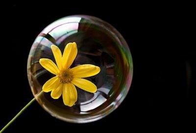 http://1.bp.blogspot.com/_UOaXAWEMCeQ/S87dmAjw_MI/AAAAAAAAABQ/7H8ZVvmh0UI/s1600/pompas-de-jabon2%5B1%5D.jpg