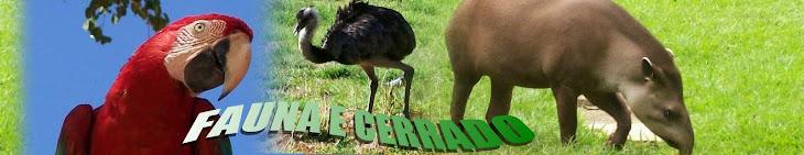 A Fauna do Cerrado e outros animais