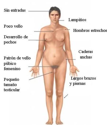 Latina cubby tits pussy