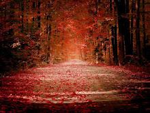 Otoño de hojas rojas soledad que avanzas por arboles sin vida...