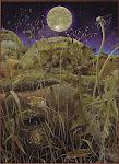 Le erbe in magia: imparare a capirle e a utilizzarle