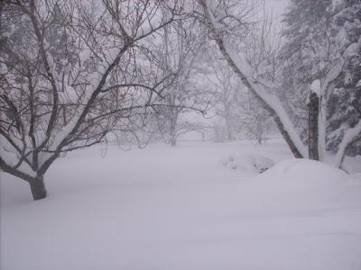 >AN EASTERN WHITEOUT, AN EASTERN CRIPPLER, SEASONAL SNOW RECORDS COLLAPSE!