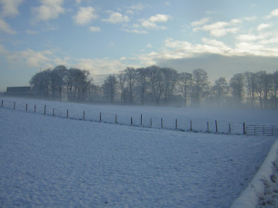 >24 March, 2010: Ferocious, Frightening or a Fairytale? A Continental Winter which brought one of the coldest, longest winters in living memory to Britain
