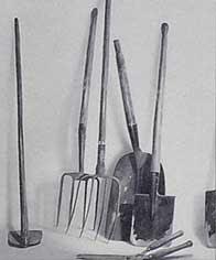 tal rasha herramientas de campo