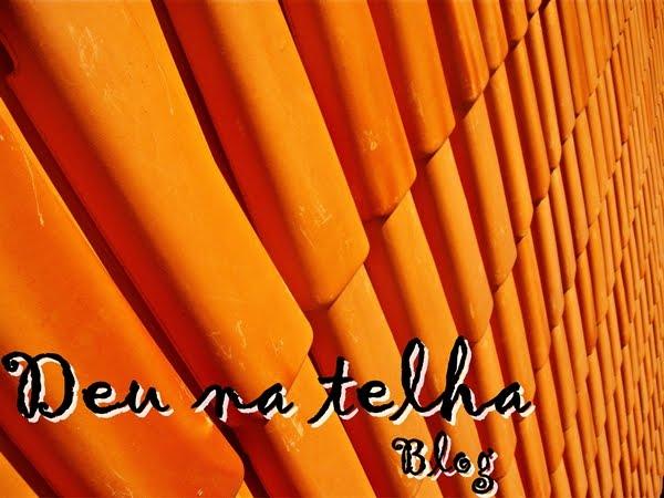 Deu na telha Blog