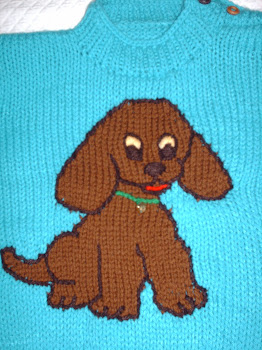 Detalle Chaleco Perro/Pullover Dog Details´