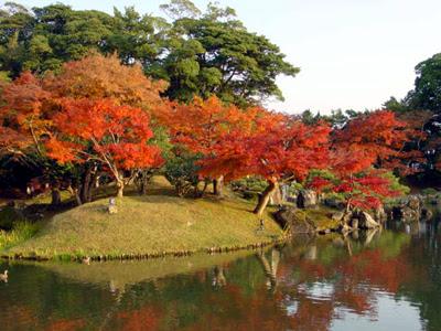 Genkyu-en Garden, Hikone, Shiga