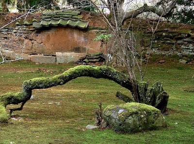 Daishoin Temple Hagi