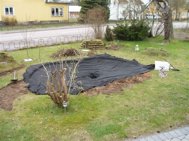 Making a shallow pond for the garden dansjo creating for Shallow garden pond