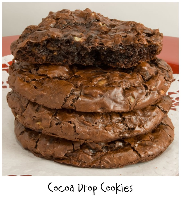 Prepared NOT Scared!: Mix Recipe #18: Chocolate Cocoa Drop Cookies!