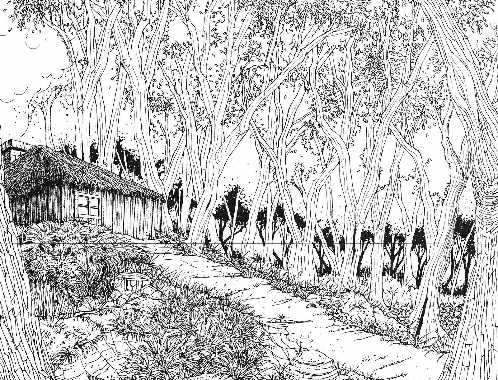 Line Art Forest : Nelson s art portfolio forest cabin