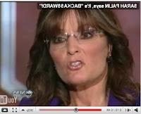 Sarah Palin, sourpuss