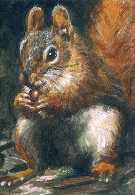 red squirrel ACEO painting
