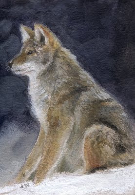 coyote painting aceo