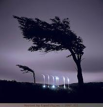 cahaya alam 3