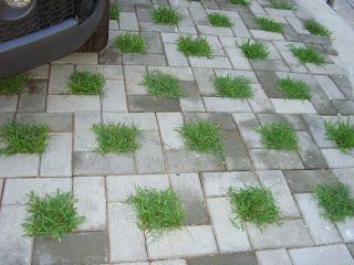 Mapre s a adoquines pasto for Baldosones de cemento