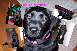 our big sweetie!!!!!
