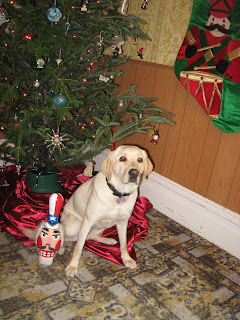 Poppy sitting with the tree with Uncle Nutcracker (a bowling pin painted as some sort of Uncle Sam/Nut Cracker)