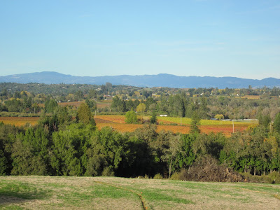 Rolling hills in Sonoma county, fall colors and blue skies