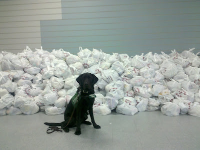 Dagan sitting in front of piles and piles of packed bags