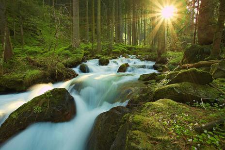 Hyperhydration: Bagaimana Air Minum Terlalu Banyak Bisa Mematikan