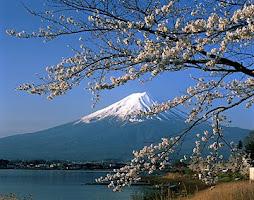 japonia 7