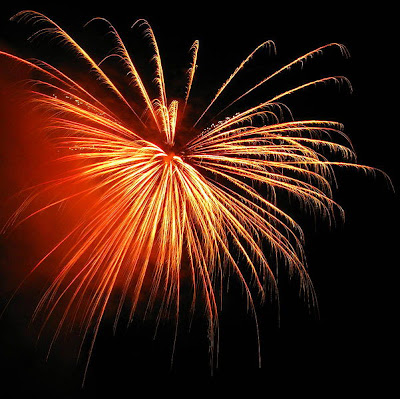 4th of July Weekend!! 1 601px Fireworks at the celebration of the United States 4th of July St. Francis Inn St. Augustine Bed and Breakfast