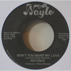 ANTONIO - don't you want my love 198x