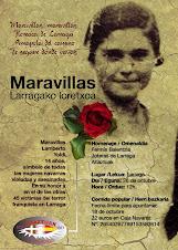 DVD (8 euro)