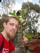 florente marcellesi -verdes-