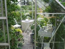 Vårt härliga växthus