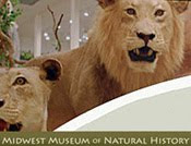 JCM Natural History Fine Art Prints at MMNH