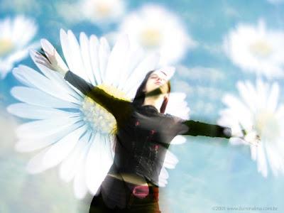 felicidade.jpg (533×400)