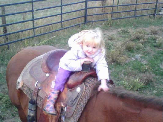 Good horsey