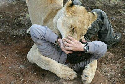 kevin richardson animal trainer