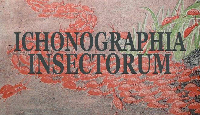 Ichonographia insectorum