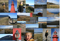 Pointe de la Gaspésie