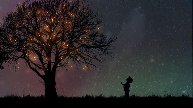http://1.bp.blogspot.com/_UlOtGwYJutE/TLLiec-uI4I/AAAAAAAADtQ/4Ji7t_WqDas/s1600/treeandboy.jpg