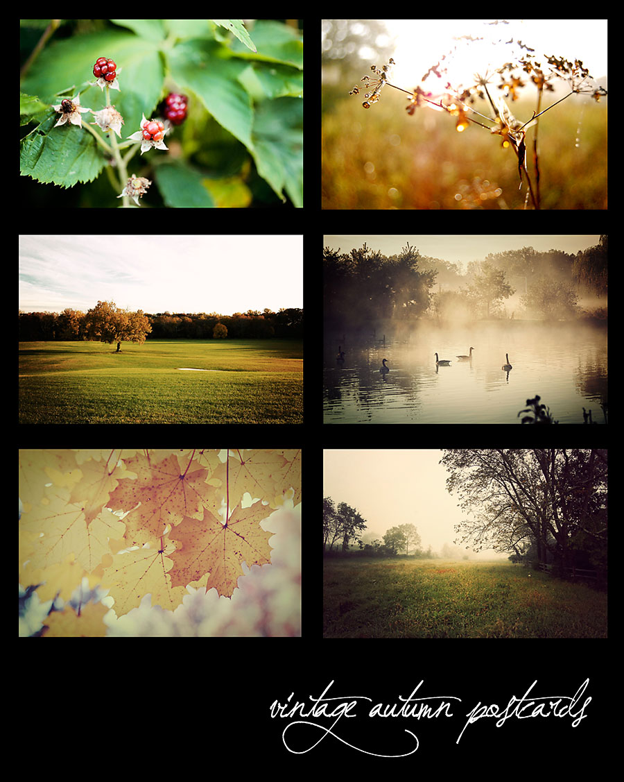 Mosaic Monday Autumn Postcards